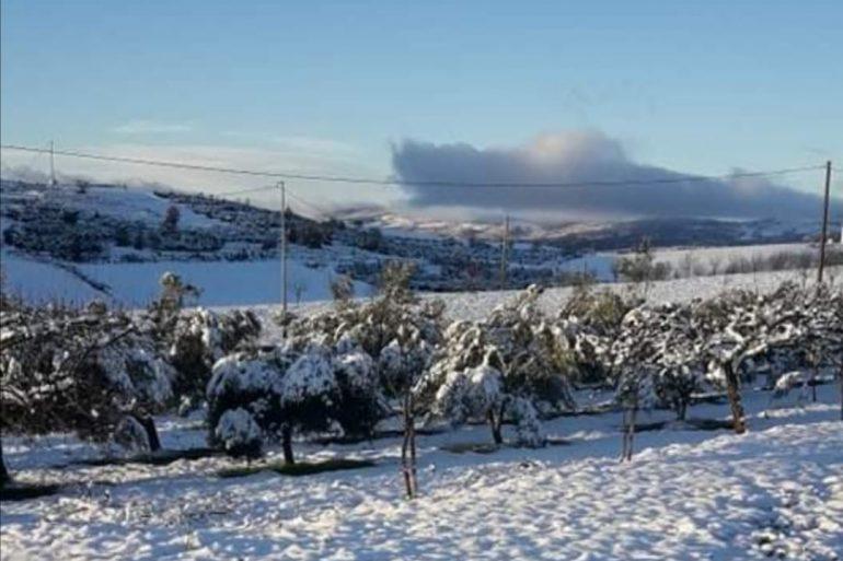 Perchè la neve è caduta su Montepaone Superiore ed invece a Catanzaro no? Spiegazione didattica dell'evento Flop
