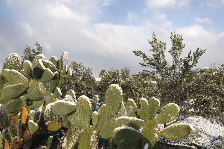 Previsione Calabria: Cieli sereni ma temperature gelide, specie al mattino