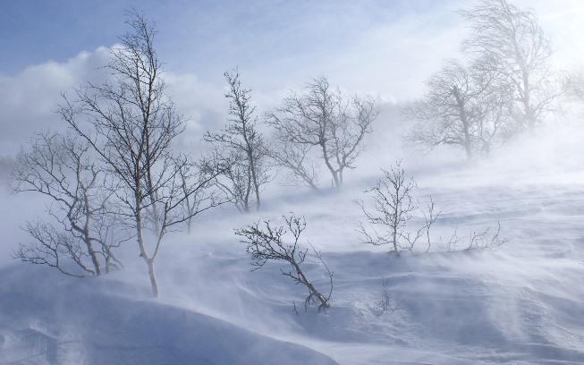 Calabria analisi Gelo: da sabato notte irruzione artico-continentale, temperature fino a -15°C sui monti e -7°C in collina. Neve a quote basse